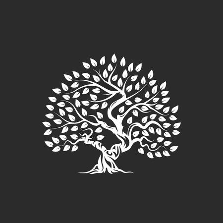Biologische natuurlijke en gezonde olijfboom silhouet pictogram geïsoleerd op donkere achtergrond. Vector Illustratie