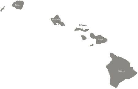 Hawaii county kaart vector overzicht in grijze kleur Stock Illustratie