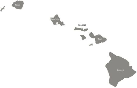 Hawaii county map  vector outline in gray color