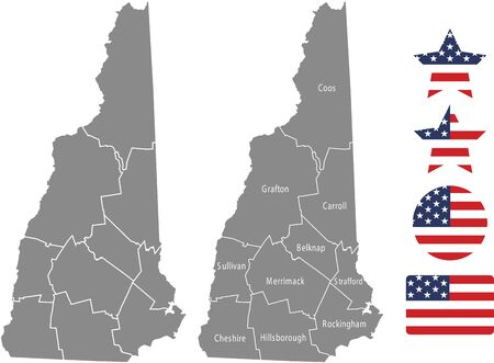 Counties map of New Hampshire with USA flag icon set Ilustrace