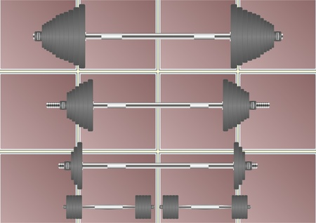 projectile: Sport projectile, barbell, against the dark tiles
