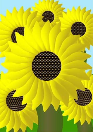 Part of the field with sunflowers on the background of greenery and sky. Illustration