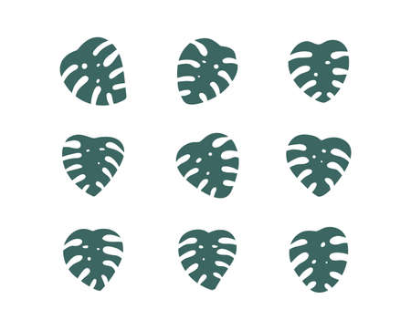 Monstera leaf vector sign set. Green leaves collection, isolated on white background. Simple cartoon flat design