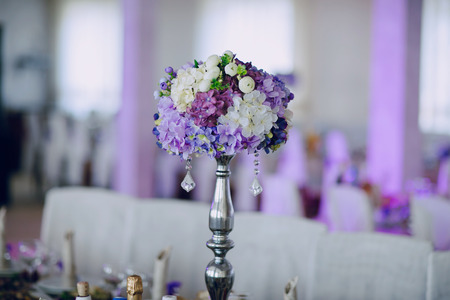 wedding reception decor food white and viollet Stock Photo