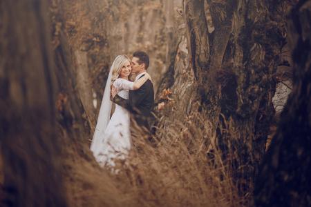 reizend Hochzeit in der alten Burg architecturenature und der Sonne