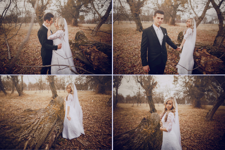cervene wedding beautiful and fashionable young couple in autumn