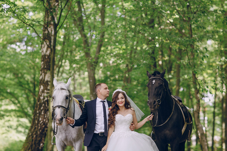 couple with horses Stock Photo - 81435753