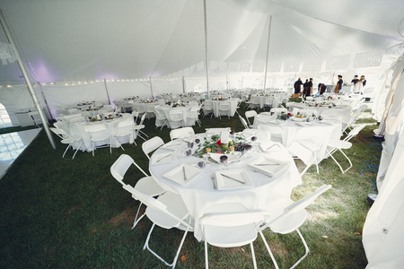Elegant wedding tables Reklamní fotografie - 113736666