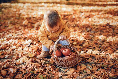 Little boy sitting in a autumn park Stock Photo
