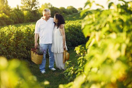 Hermosa pareja adulta pasar tiempo en un campo de verano