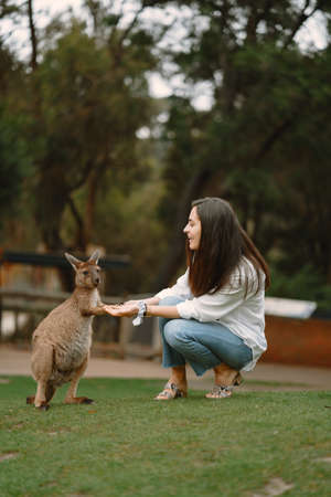 Woman at a reserve is playing with a kangaroo