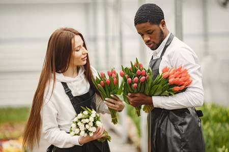 Guy with a girl in a greenhouse with tulips