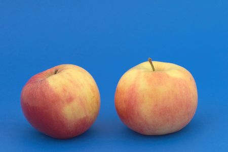 Two apples on the blue background photo