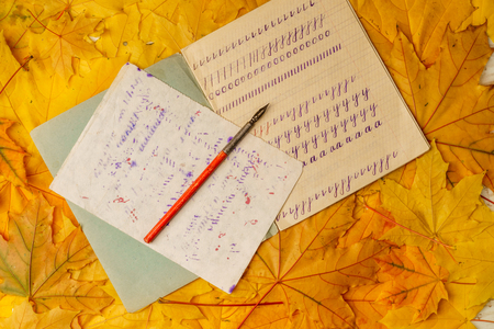 Old school exercise book with a wooden ink pen on a background of yellow maple leaves. A exercise book first-grade and wooden pen  for ink of the mid-20th century.