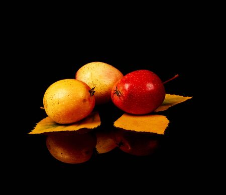 Ripe wild apples with yellow autumn leaves isolated on black background.
