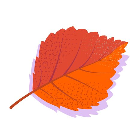 Orange vector birch leaf with shadow, isolated on white background. Single autumn leaf. Stock Illustratie