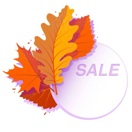 Sale circle banner with bright autumn leaves. Vector discount offer with falled red maple, orange oak, yellow rowan foliage on white background. Poster, card, label, web banner. Isolated concept.
