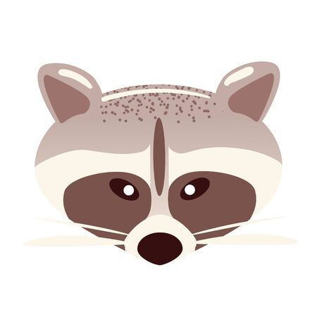 Cartoon raccoon face in flat style on white background. Animal character sticker. Racoon head vector illustration. Isolated zoo party mask. Childrens simple clip art, front view.