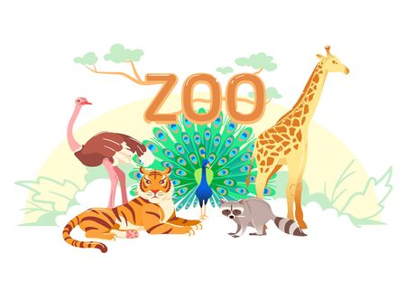 Zoo flat web banner. Group of cartoon animals on white horizontal cover or social media header. Ostrich giraffe tiger raccoon peacock simple nature poster. Exotic animal vector card. Children postcard Çizim