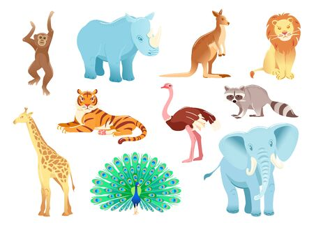 Cartoon character animals set Isolated on white background. Funny zoo shapes. Vector illustration object. Flat collection Rhinoceros kangaroo Ostrich tiger lion elephant monkey giraffe raccoon. Çizim