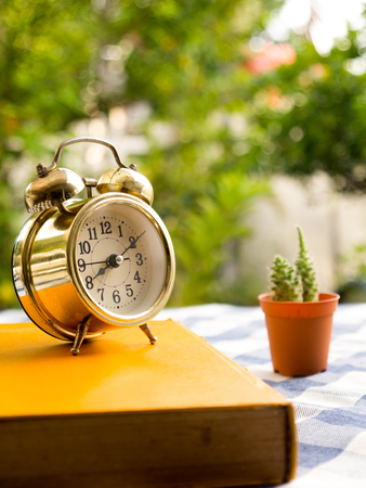 old desk: yellow book with vintage alarm clock and cactus on blue plaid tablecloth. The background is green from tree and light bokeh