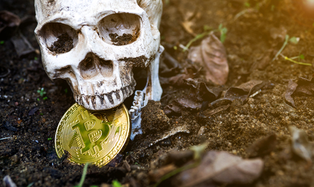 Close up of Skull biting bitcoin on the ground Leaves dry on the ground and the side of the skull and Golden bitcoin. The concept of investment and fluctuation of bitcoin and crypto currency.