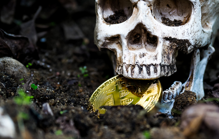 Close up of Skull biting bitcoin on the ground Leaves dry on the ground and the side of the skull and Golden bitcoin. The concept of investment and fluctuation of bitcoin and cryptocurrency.