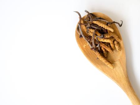 Groupe d'Ophiocordyceps sinensis ou cordyceps aux champignons c'est une herbe placée sur une cuillère en bois sur fond isolé blanc. sur table en bois. Médecine biologique nationale. Banque d'images