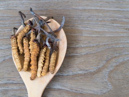 Groupe d'Ophiocordyceps sinensis ou cordyceps aux champignons c'est une herbe placée sur une cuillère en bois sur fond de bois Banque d'images