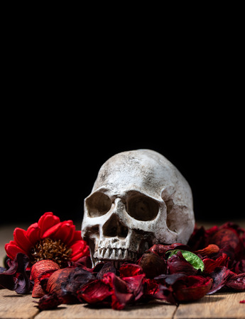 In front of human skull placed on red dried flowers on the wooden background.concept of death and Halloween Standard-Bild - 110368228