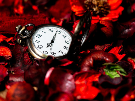 Golden vintage pocket watch put on a wooden table with red dried flowers with aroma Standard-Bild - 110368273