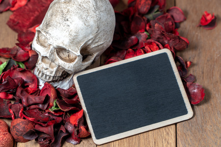 In front of human skull placed on red dried flowers on the wooden background with blank blackboard for text and content of death and Halloween Standard-Bild - 110368301