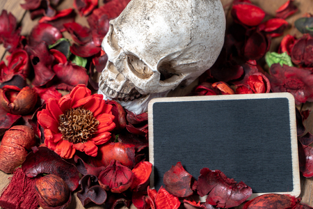 In front of human skull placed on red dried flowers on the wooden background with blank blackboard for text and content of death and Halloween Standard-Bild - 110368306