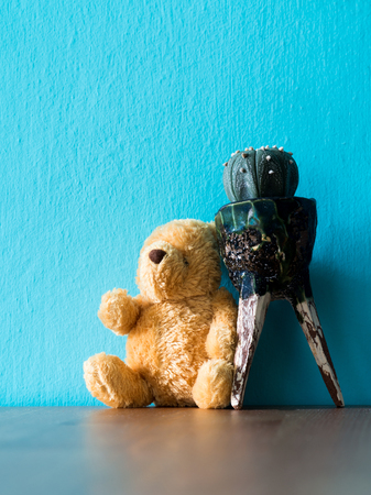 The brown teddy bear sitting lean on the cactus on wood table. the background is turquoise and copy space for content.