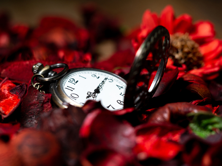Golden vintage pocket watch put on a wooden table with red dried flowers with aroma Standard-Bild - 118753423