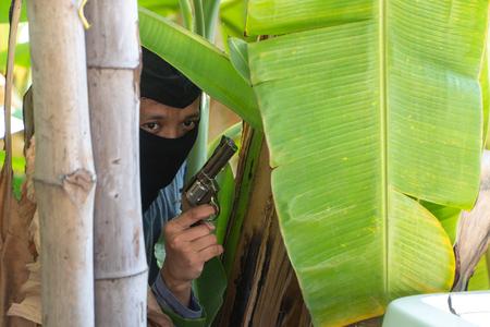 Der Räuber hält eine Waffe hinter dem Baum (Bananenbaum). Konzept der Unsicherheit in Leben und Eigentum. Warnung nicht zu unterschätzen Standard-Bild