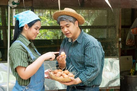 Couples are working at the chicken egg farm. And are choosing fresh eggs Both look happy and healthy.