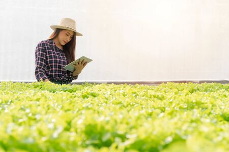 Asian woman farmer check salad vegetable growth and use tablet for control water, light, temperature in hydroponic plant system farm in the greenhouse. Concept of digital technology for agriculture