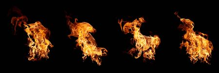 Group of real and hot flames are burning on a black background.