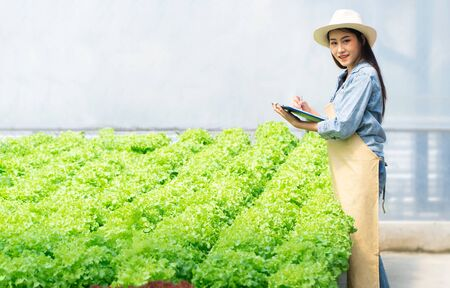 Asian farmer woman holding clipboard and raw vegetable salad for check quality in hydroponic farm system in the greenhouse. Concept of water, light, temperature control environment. Organic foods