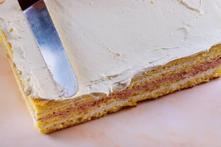 Layer sponge cake with wipped cream cheese and blended sour cherry filling. Stock fotó