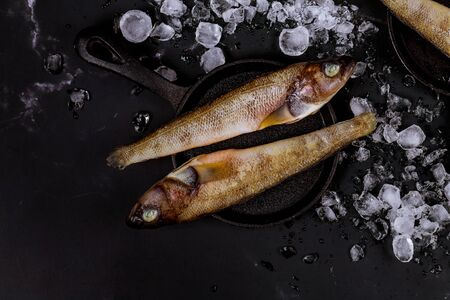 Fresh whole fish with ice on black table. Top view. Banque d'images