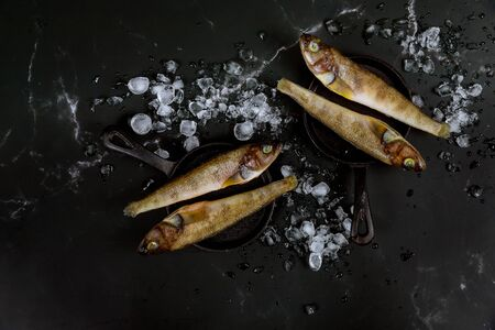 Uncooked whole fish with ice on black table. Top view.