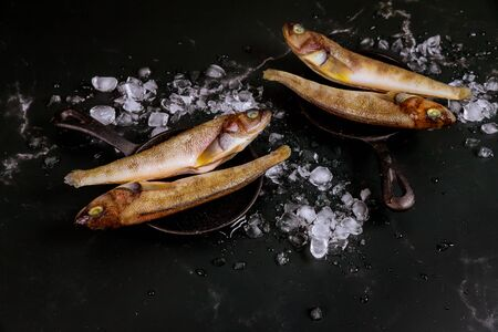 Raw fish on skillet with ice on black background. Seafood concept.