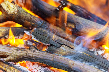 Abstract background of fire, flame and wood logs. Close up. 免版税图像