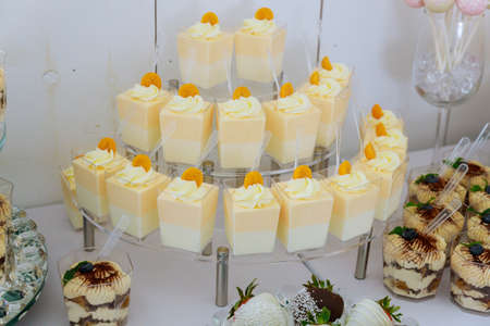 Mini dessert puding and sweets. Appetizers catering food. Party table.