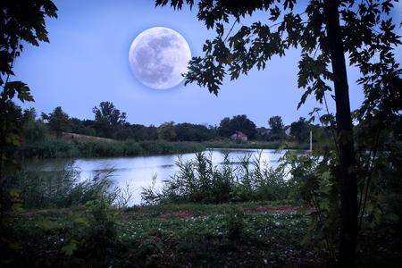 Romantic lake in moonrise photo