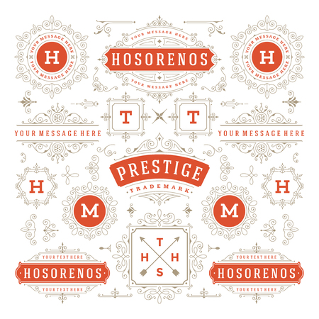 Vintage Vector Ornaments Decorations Design Elements. Flourishes calligraphic combinations design