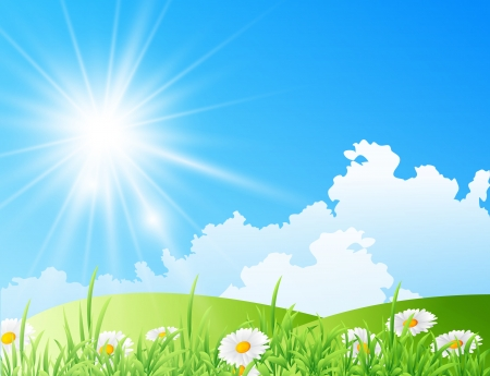 Vector illustration of field of daisies with bright sun Illustration