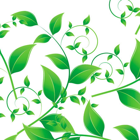 Vector illustration of green leaves pattern